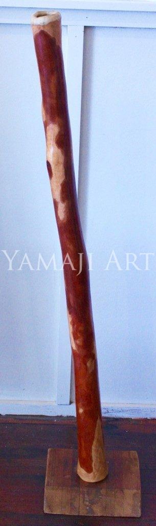 Plain Didgeridoo - Neil Fraser