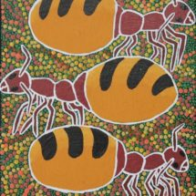 Honey Ants - Andrea Green-Ugle