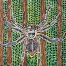 Gemma Merritt's Huntsman Spider